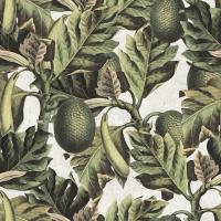 Tropisch fruit behangpapier
