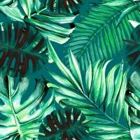 Regenwoud behangpapier