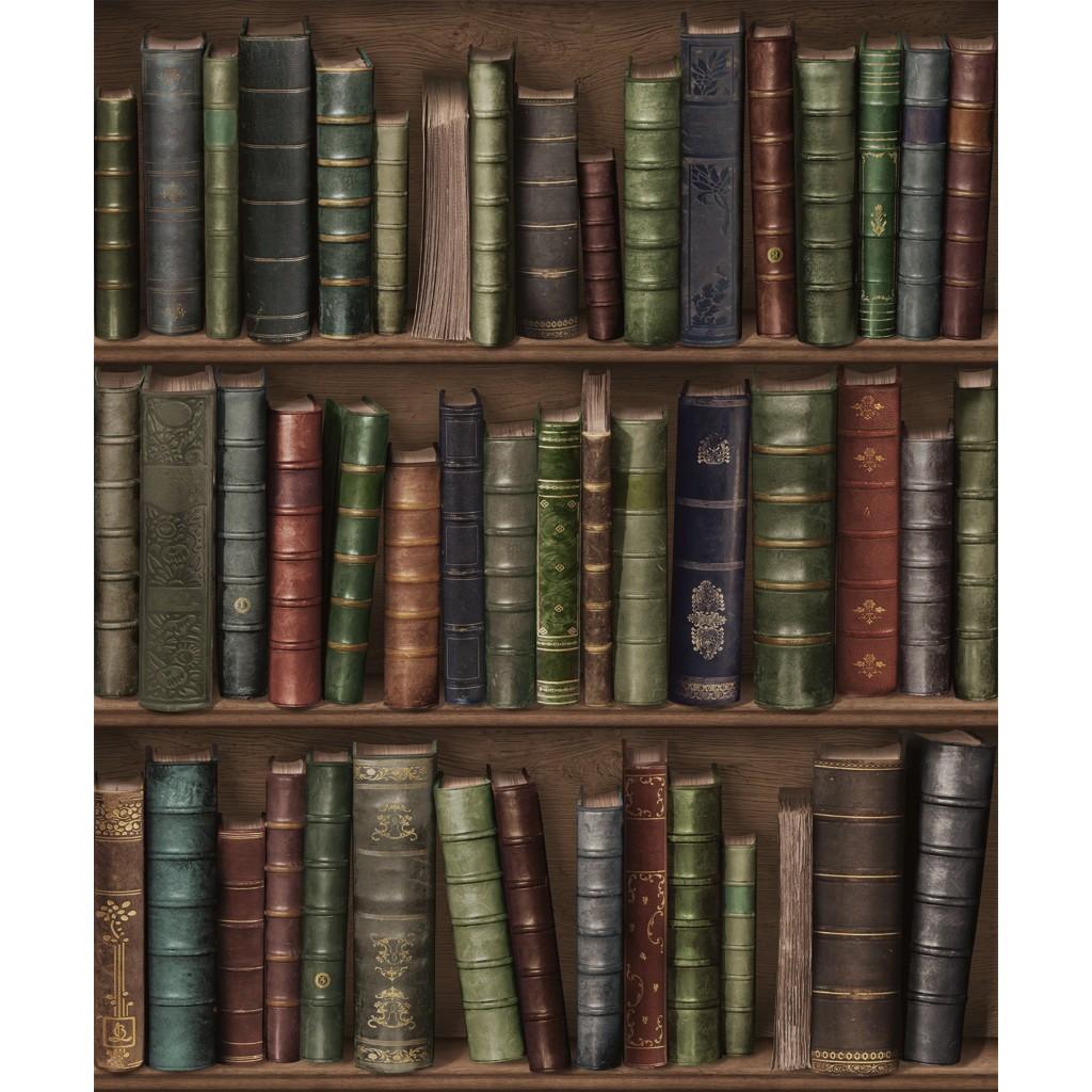 papier peint biblioth que oxford funkywalls d webshop voor vintage en modern behang. Black Bedroom Furniture Sets. Home Design Ideas
