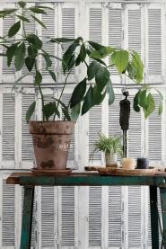 ESTA behang witte houten luiken