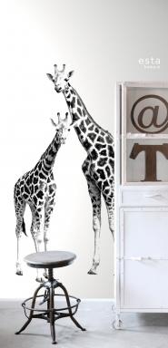 muurposter giraffen