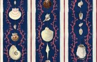 Luxebehang Coquillage blauw