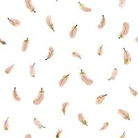 papier peint Lilipinso plumes