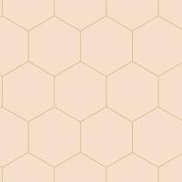 Beige-gold hexagon wallpaper