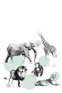 muurposter dieren
