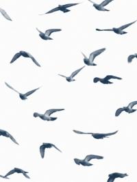 LAVMI behang met duiven