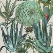 Succulentus