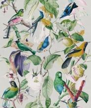 Tropische vogels behang