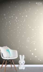 muurposter sterrenhemel