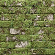old mossy white bricks wallpaper