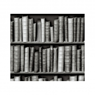 black and white bookshelve wallpaper